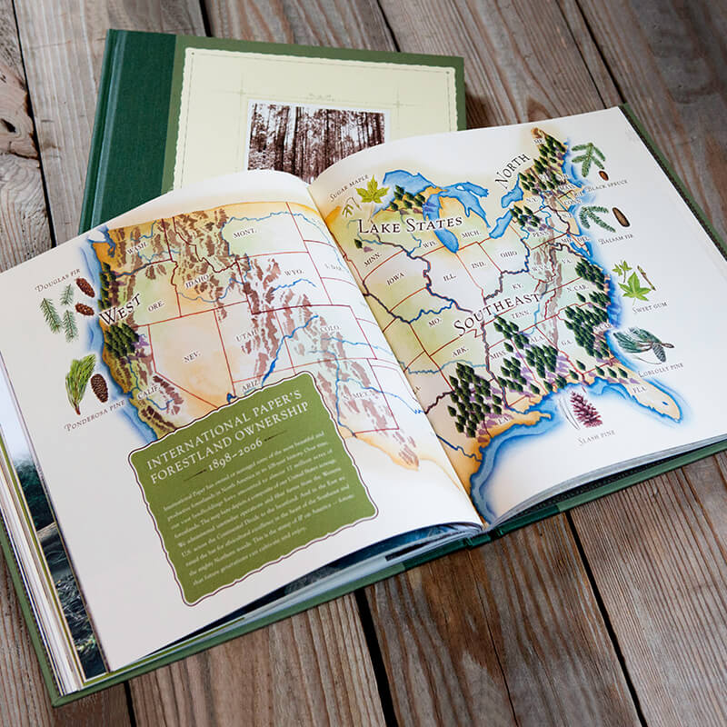 Coffee-table book titled deeply into the forest, about International Paper's passion for forestry
